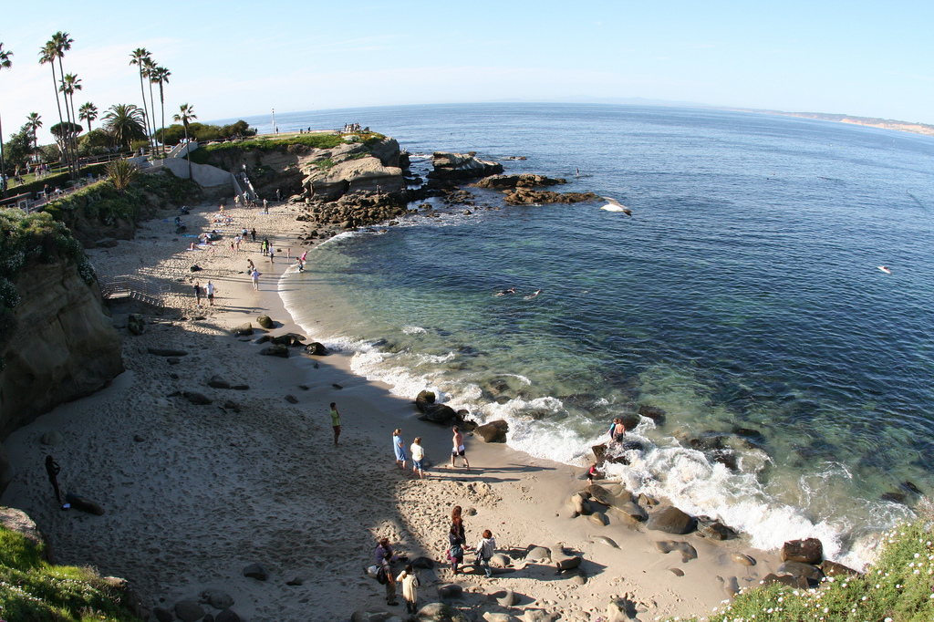 San Diego Rv Resort Has A Great Day Trip For You To La Jolla California