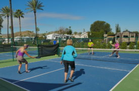 Golden Village Palms Pickleball