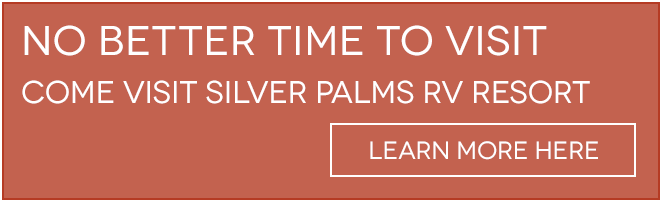 Visit our Silver Palms RV Resort